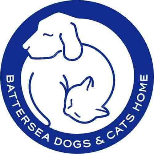 battersea dogs home keith brazil